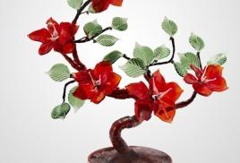 5 крупных красных цветов